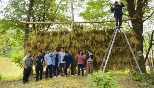 稲刈りスライドショー。