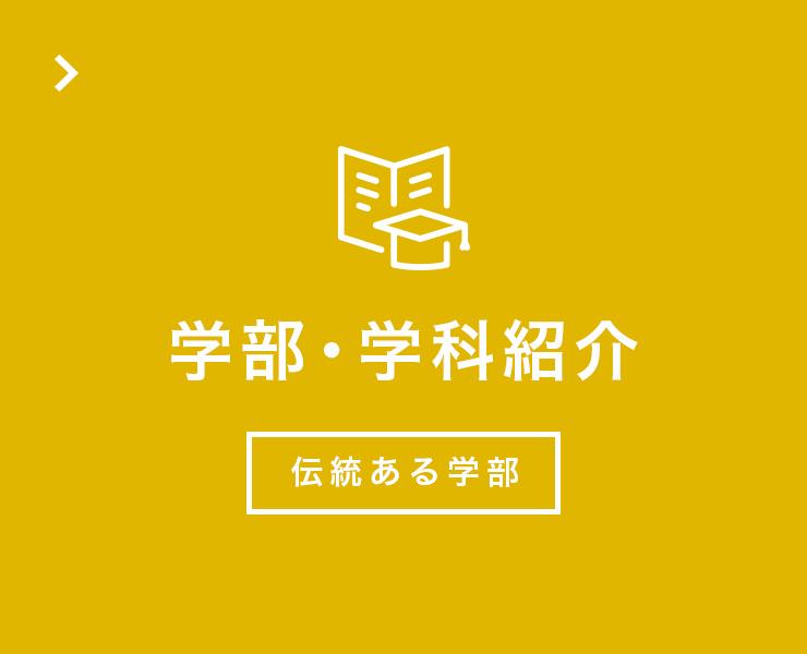 学部・学科紹介